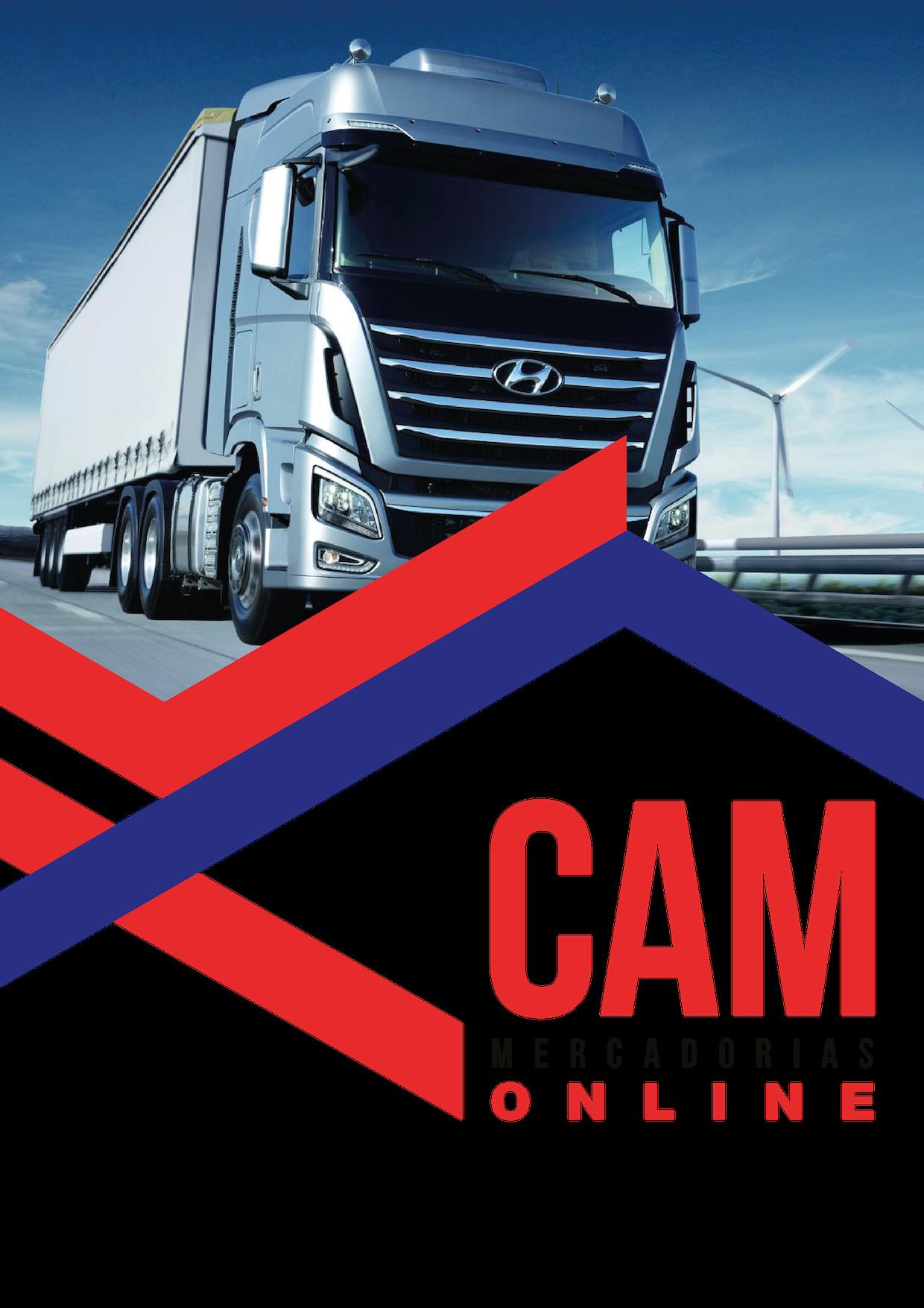 21/E04 CAM FC M (672)